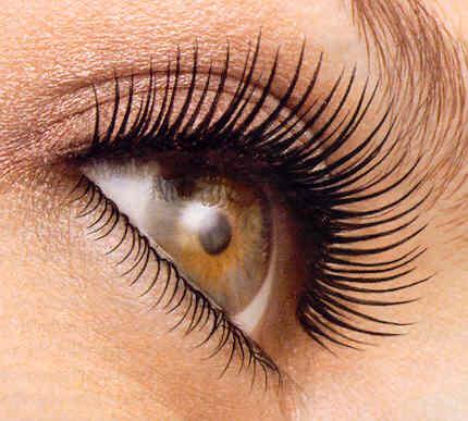 mascara kinnelonconserves.net